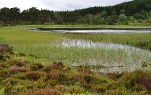Schottland Speyside