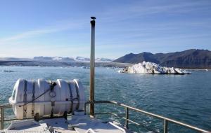 Jökulsarlon, Gletscherlagune