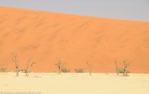 Sossus Vlei und Death Veil Namibia 2013