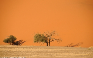 durch die Wüste Namib Richtung Sossus Vlei