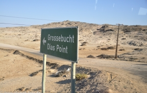 Diaz Point Namibia 2013