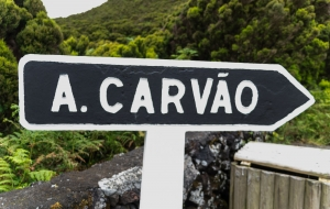 Algar do Carvao, sehr große Lavahöhle mit sichtbarem Kraterausblick, und Kratersee am Grund. , Terceira