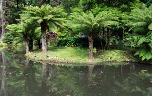 Furnas, Parque Terra Nostra auf Sao Miguel