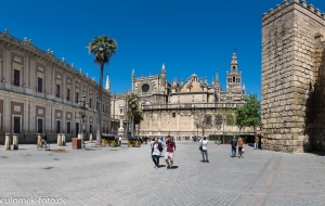 Sevillia