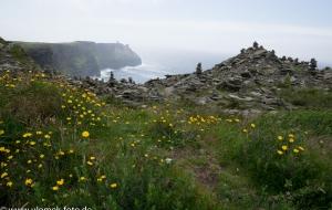 Cliffs of Mohair 09.07.16