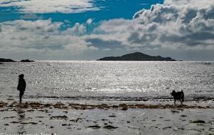 Omay Island in der Nähe von Clifden 11.07.16