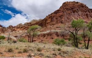 über Colorado Plateau zum Red Canyon und Bryce Canyon