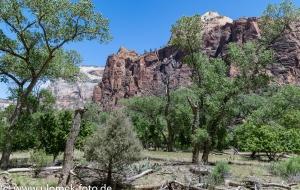 Zion Nationalpark,