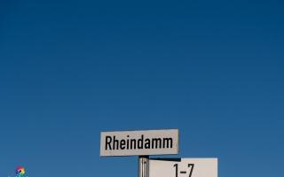 Rheindamm Nähe Xanten 30.12.19