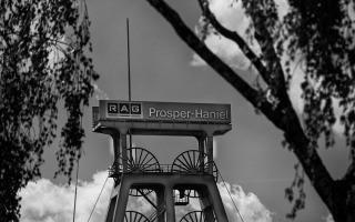 RAG Prosper Haniel unterwegs auf der Halde, bei Bottrop