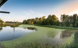 Nettetal De Wittsee Start bei Campingplatz Tiefotografie vom Beobachtungs Stand 18.08.2020