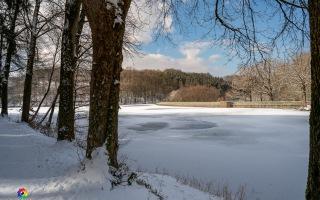 Heilenbecker Talsperre Ennepetal -7 Grad C am 12.02.2021